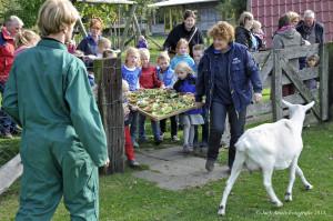 De Hofte dierendag 2013 057